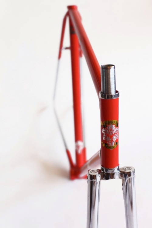 Superb-vivace-prototype-track-bicycle-frame3