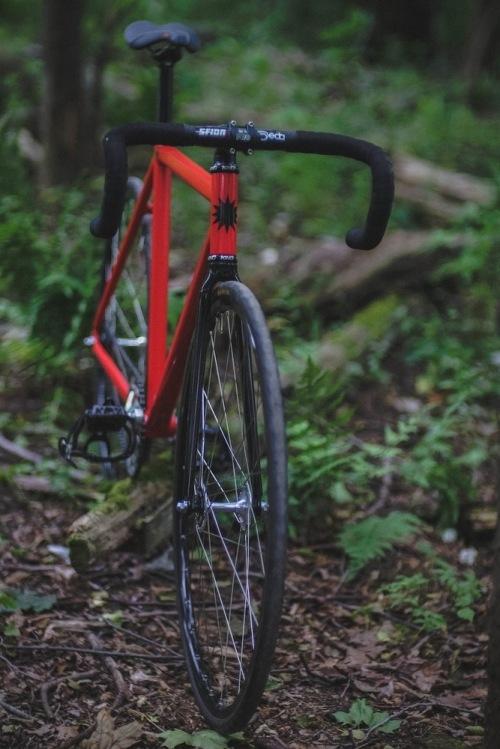 Dodici_woods-17
