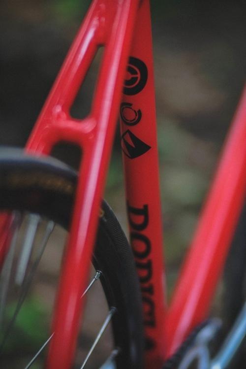 Dodici_woods-21